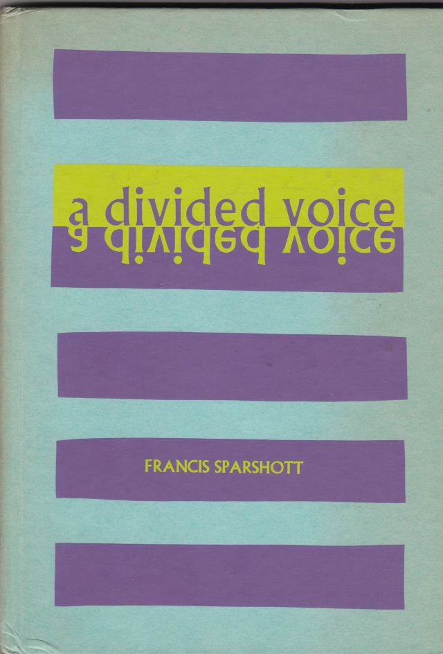Image for A Divided Voice
